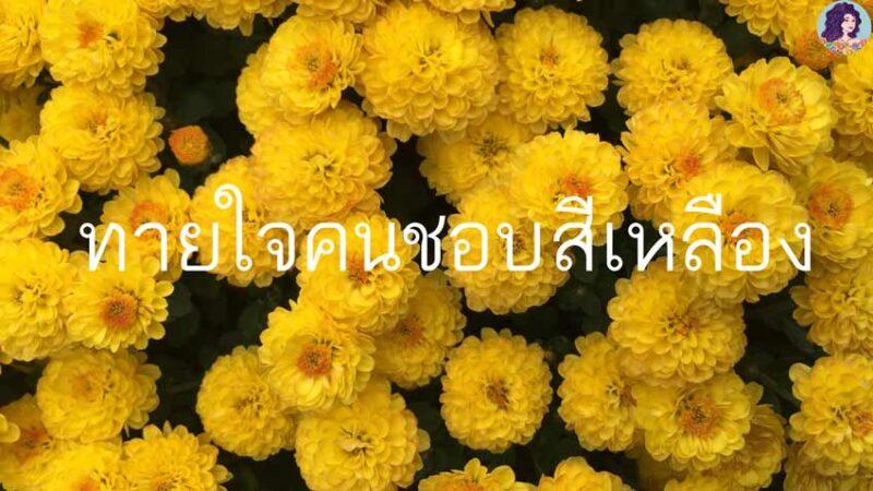 ทายใจคนชอบสีเหลือง