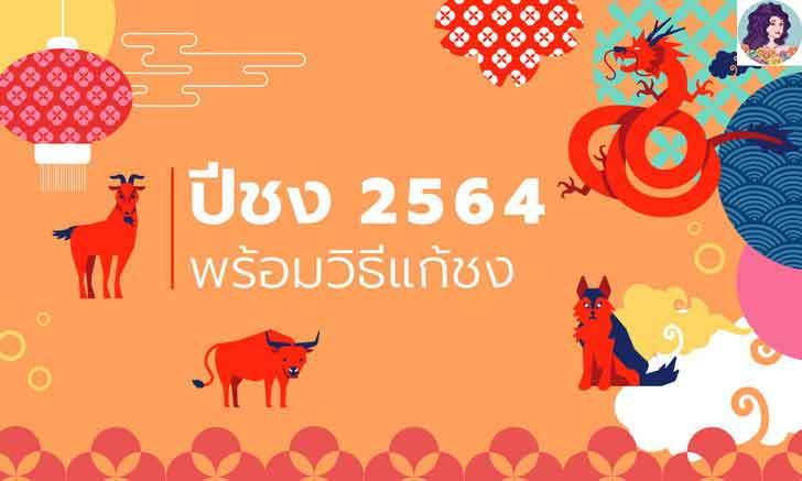 2564 ปีนักษัตรปีฉลู มีปีไหนชงบ้าง พร้อมวิธีแก้ปีชง