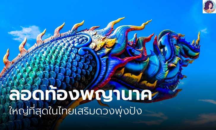 ลอดท้องพญานาคใหญ่ที่สุดในไทยเสริมดวงพุ่งปัง